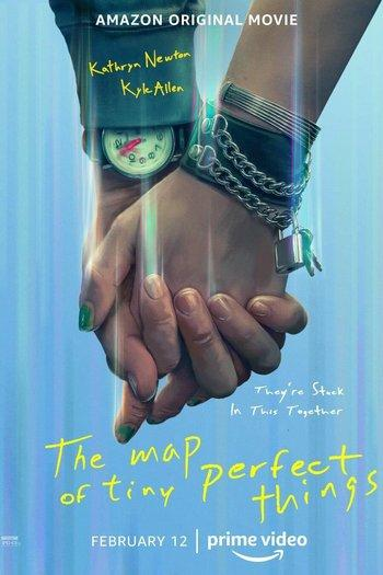 Poster of The Map of Tiny Perfect Things