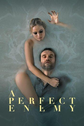 Poster of A Perfect Enemy