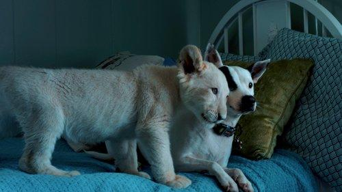 Image of Lena and Snowball