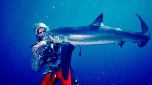 Image of Valerie Taylor: Playing With Sharks