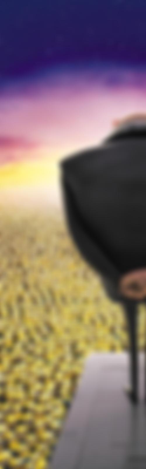 Image for Despicable Me 2